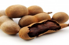 export-activities-of-indonesian-tamarind-by-pt-tiga-rasa-indonesia - Web design surabaya
